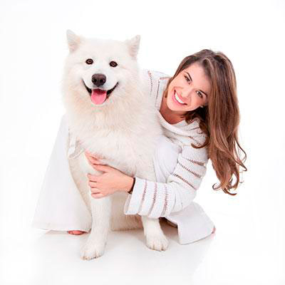 services-pet-grooming-care